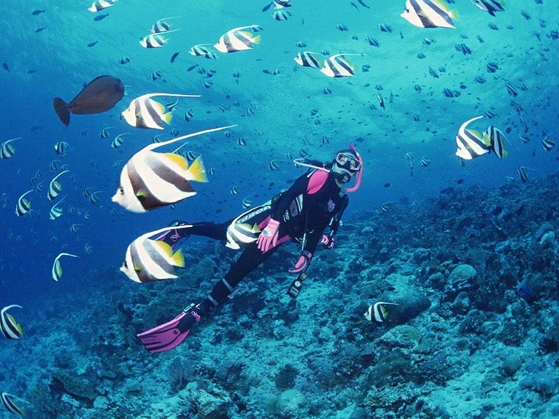 diving-in-kish-tour